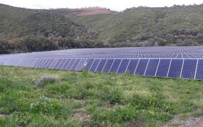 Le projet de centrale photovoltaïque au sol dans le Lot-et-Garonne ouvre au financement participatif